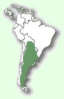 Дикий кіт Жоффруа: мапа поширення