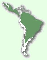 Ягуарунді - мапа поширення
