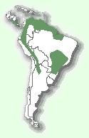 Мапа території проживання онцили