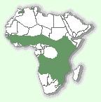 Мапа території проживання сервала