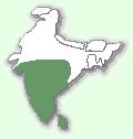 Мапа територій плямисто-рудої кішки