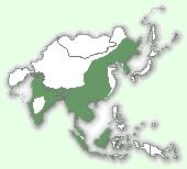 Мапа територій бенгальської кішки