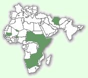 Гепард: мапа поширення